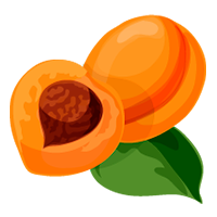 albaricoque de domyfruit