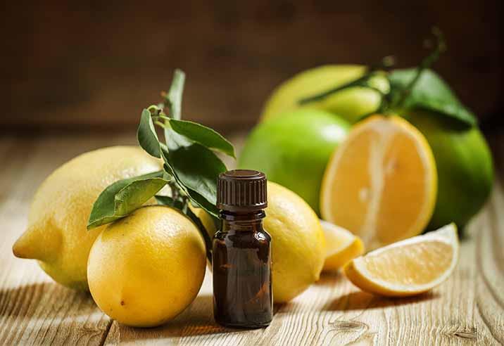 Limon Domyfruit