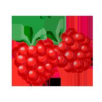 frambuesa domyfruit