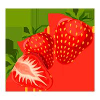 fresa domyfruit