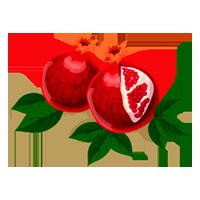 granada domyfruit