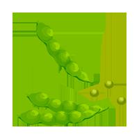 guisantes domyfruit