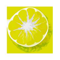 lima domyfruit