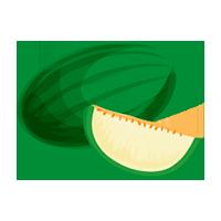 melón domyfruit