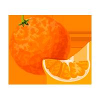 naranja domyfruit