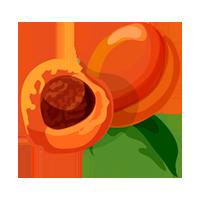 nectarina domyfruit