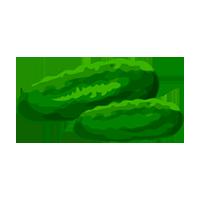 pepino domyfruit