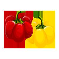 pimientos domyfruit
