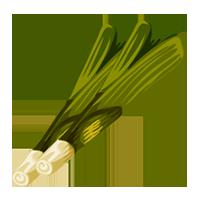 Puerro verdura Domyfruit