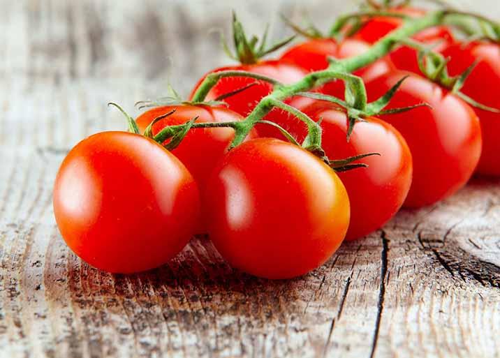 Tomate Domyfruit