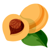 melocotón domyfruit