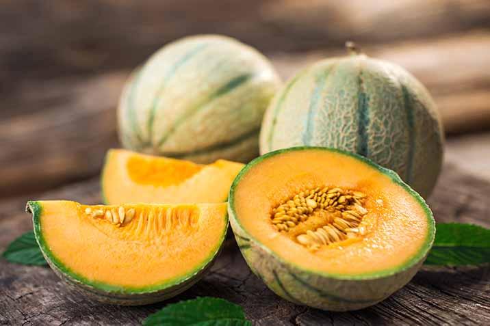 Melon Domyfruit
